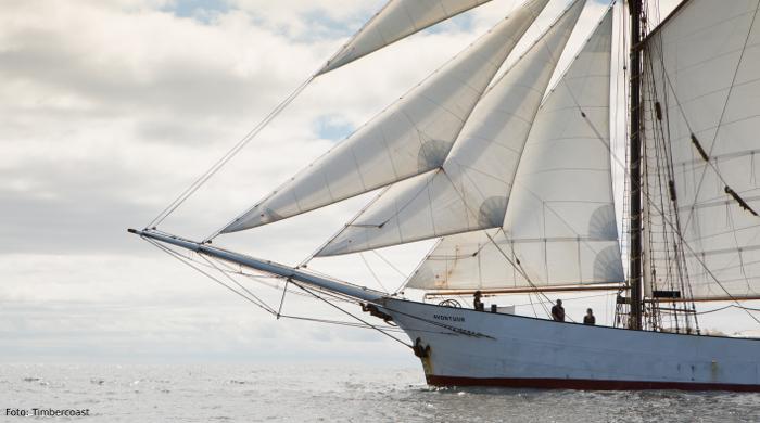 Avontuur-Frachtsegler-Green-Shipping-News